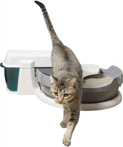 PetSafe Simply Clean Cat Litter Box
