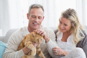 Cat Food Advisor