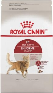 Royal Canin Fit and Active Dry Cat Food
